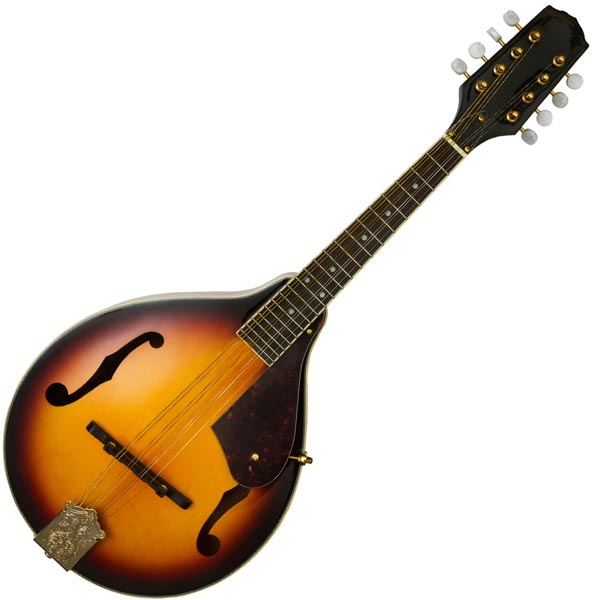 mandolin music lessons vancouver